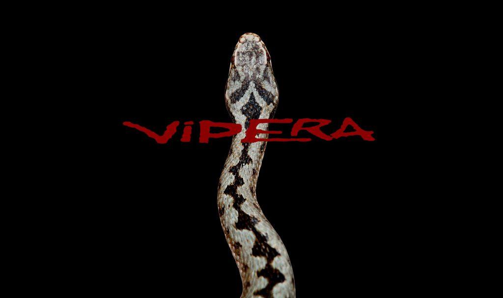 """Vipera 3pz. 10'6"""" # 2-3"""